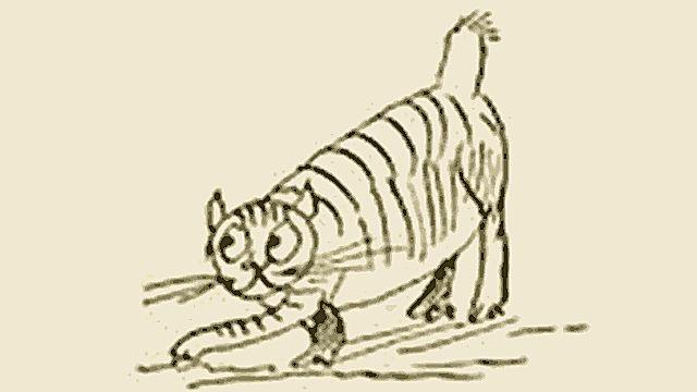 Edward Lear's Cat Foss