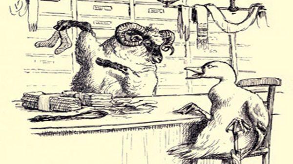 Duck Buying Socks