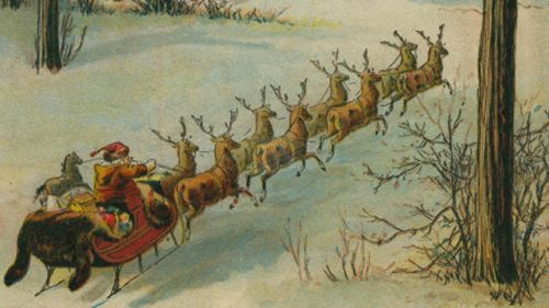 Eight Reindeer